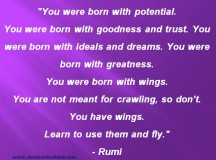 You Have Wings, Learn To Use Them and Fly