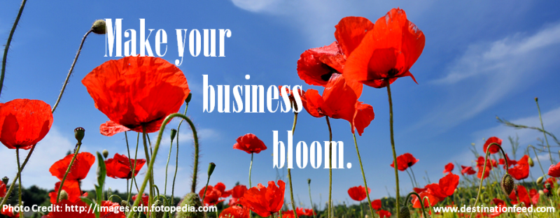 8 Tips To Make Your Business Bloom