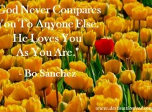 Quote for the Day: God Never Compares You To Anyone Else