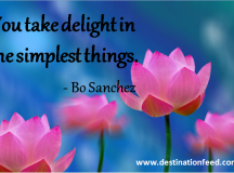 Quote of the Day: The simplest things