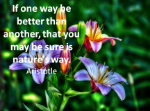 Quote of the Day: Nature's way